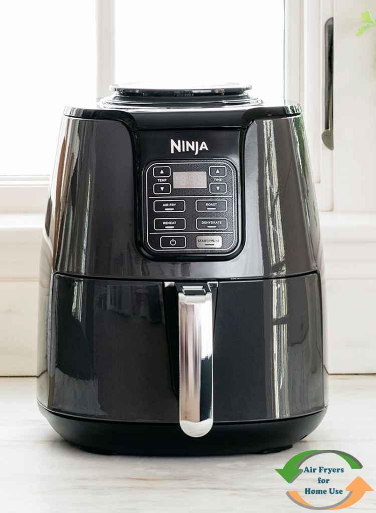 Ninja Air Fryer AF101 Review